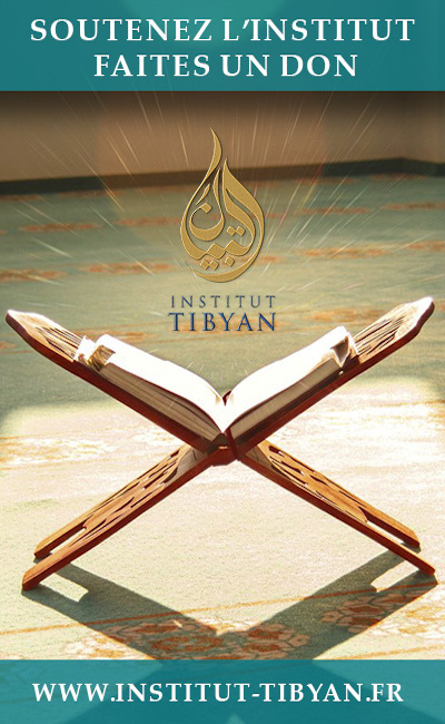 don tibyan plus